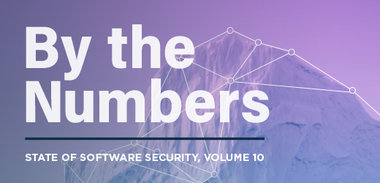 State of Software Security Volume 10 By The Numbers