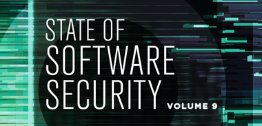 State of Software Security Volume 9